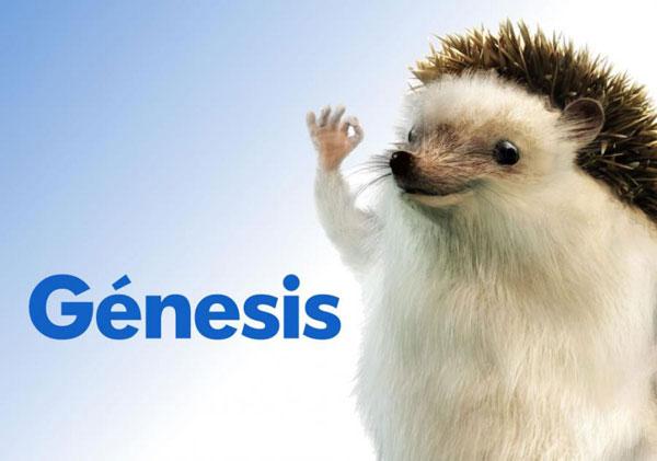 Rizo el erizo - Seguros de coches Génesis